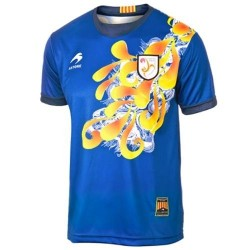 National Jersey Catalonia (Catalunya) 2013/14 Home-Goshawk