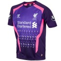 Liverpool Fc goalkeeper Jersey Away 2013/14 short sleeve PL - Warrior