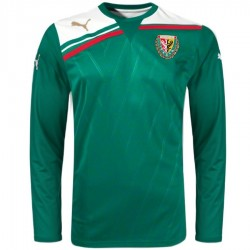 Slask Wroclaw Home football shirt 2012 long sleeves - Puma