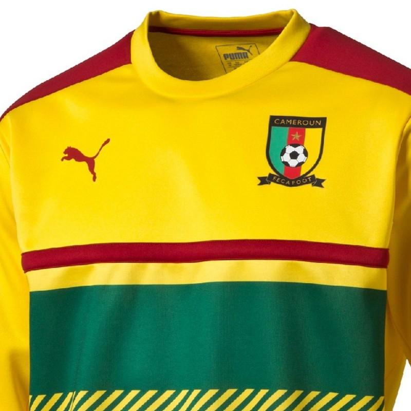 kamerun fussball