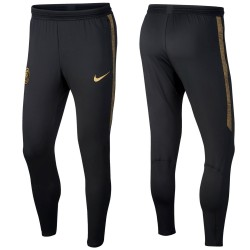 Inter Milan training technical pants 2019/20 - Nike