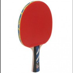 Tennis Racket CarboTech Stiga Wrb