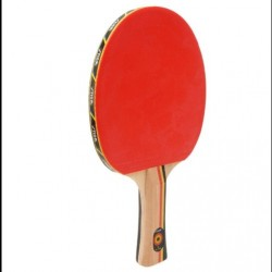 Tennis raquette Stiga JM Saive esprit