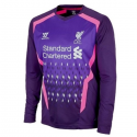 Liverpool Fc goalkeeper Jersey Away 2013/14-Warrior