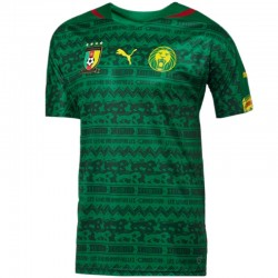 Maillot de foot Cameroun domicile 2014/15 - Puma