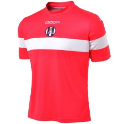 Camiseta de futbol FC Toulouse tercera 2013/14 sin sponsor - Kappa
