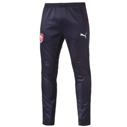 Czech Republic technical training pants 2016/17 - Puma