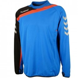 Hummel Teamwear Tech-2 technical training sweatshirt - blue